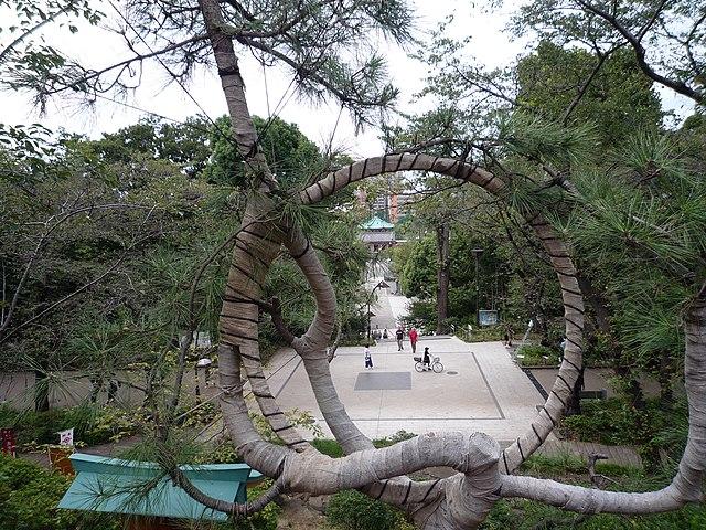 3 parcs animaliers d'exception à visiter au Japon